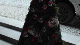 Výstava vánočních stromků / fotogalerie / Charita Hranice + Denní centrum Archa Hranice, foto: Ivana Žáková