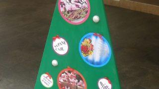 Výstava vánočních stromků / fotogalerie / D D Obchůdek Hromůvka Hranice, foto: Veronika Koláčková