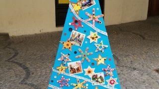 Výstava vánočních stromků / fotogalerie / Centrum pro rodinu Jitřenka, foto: Ivana Žáková