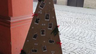 Výstava vánočních stromků / fotogalerie / MŠ Drahotuše, foto: Ivana Žáková