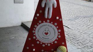 Výstava vánočních stromků / fotogalerie / Společenský klub Panenka Hranice, foto: Ivana Žáková