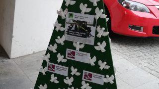 Výstava vánočních stromků / fotogalerie / Střední průmyslová škola Hranice, foto: Ivana Žáková