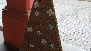 Výstava vánočních stromků / fotogalerie / Střední zdravotnická škola Hranice, foto: Ivana Žáková