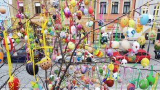 Kraslicovník na Masarykově náměstí / fotogalerie / Kraslicovník na Masarykově náměstí, foto: Ivana Žáková