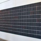 Výstava Tomáše Polcara k vidění do konce září