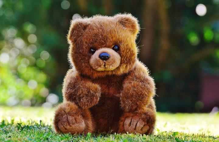 Vernisáž k výstavě Medvídci