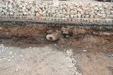 Unikátní nález historického vodovodního potrubí / fotogalerie / Na náměstí našli archeologové historické dřevěné vodovodní potrubí, foto: facebook Hranické drbárny pro Hraničáky